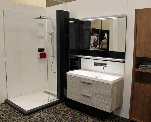 Bathroom Vanity and Walk-In Shower